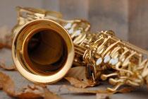 De traditie en symboliek van  de trouwring